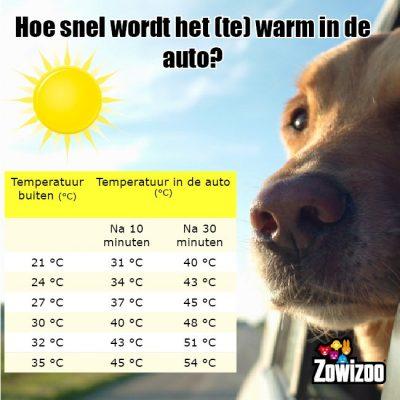 150704-Temperatuur-voor-hond-in-auto-Zowizoo-400x400.jpg